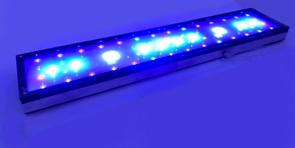 کنترل-نور-آکواریوم